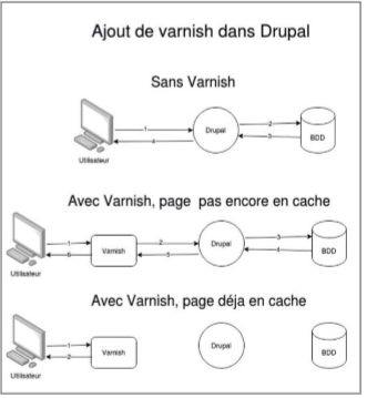 cache drupal